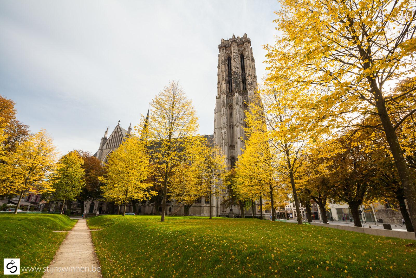 Mooie herfstkleuren in de Mechelse binnenstad