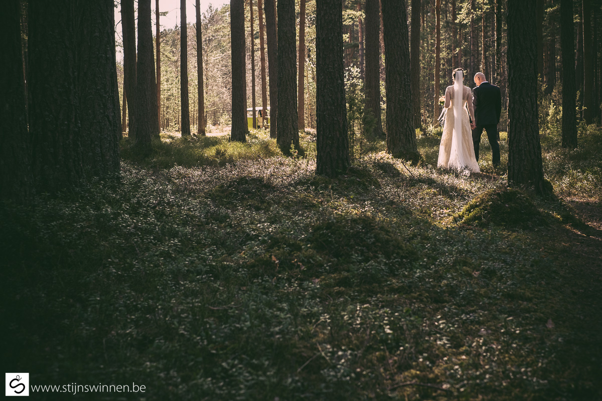 Wedding in the forests of Latvia