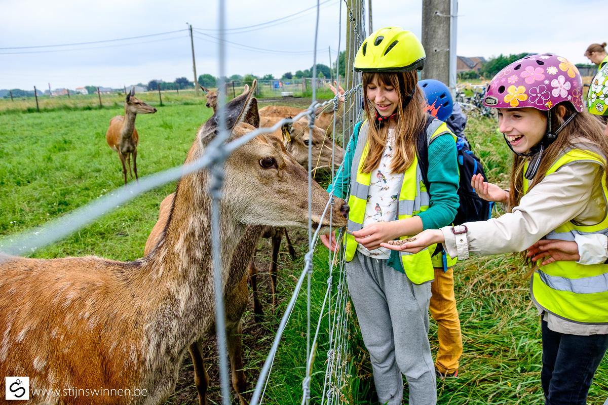 Jongeren tijdens Buitenprikkels event voor scholen in regio Mechelen